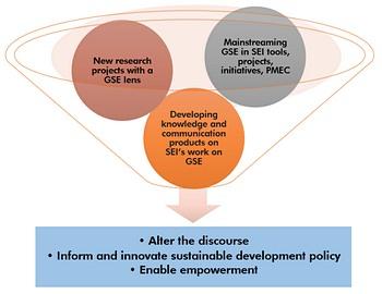 SEI GSE Programme graphic